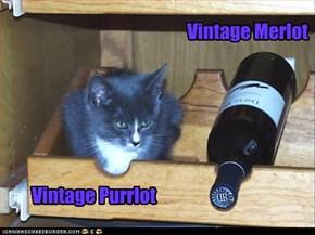 Vintage Merlot