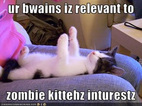 ur bwains iz relevant to     zombie kittehz inturestz