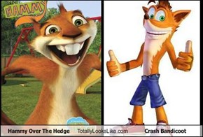 Hammy Over The Hedge Totally Looks Like Crash Bandicoot