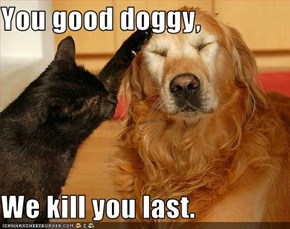 You good doggy,  We kill you last.