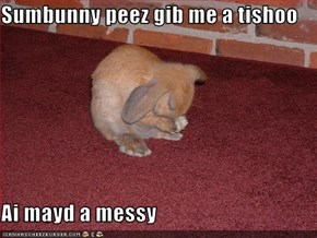Sumbunny peez gib me a tishoo  Ai mayd a messy