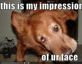 this is my impression  of ur face