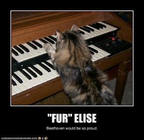 """FUR"" ELISE"