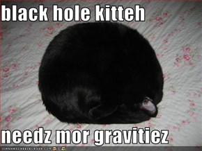 black hole kitteh  needz mor gravitiez