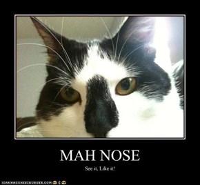 MAH NOSE