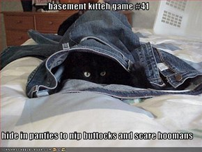 basement kitteh game #41  hide in panties to nip buttocks and scare hoomans