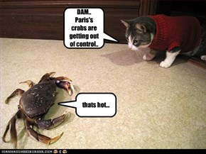DAM.. Paris's crabs are getting out of control..
