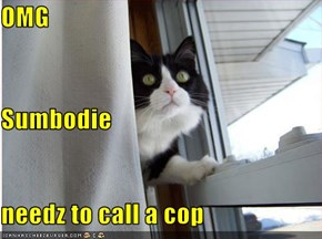 OMG Sumbodie needz to call a cop