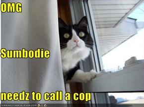 OMG Sumbodie needz to call a cop