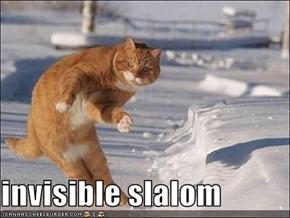 invisible slalom