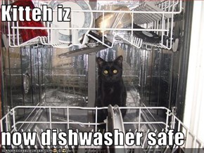 Kitteh iz   now dishwasher safe