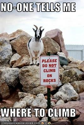 NO-ONE TELLS ME  WHERE TO CLIMB