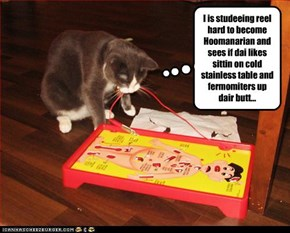 I is studeeing reel hard to become Hoomanarian and sees if dai likes sittin on cold stainless table and fermomiters up dair butt...