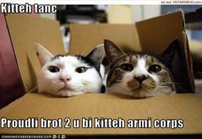 Kitteh tanc  Proudli brot 2 u bi kitteh armi corps