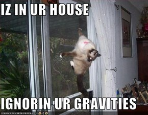 IZ IN UR HOUSE  IGNORIN UR GRAVITIES