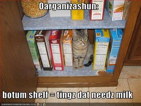 Oarganizashun:  botum shelf = tingz dat needz milk