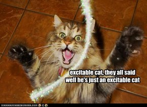 excitable cat, they all said well he's just an excitable cat