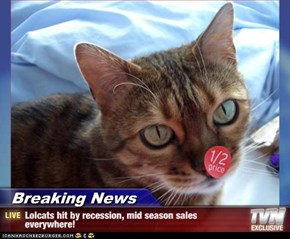 Breaking News - Lolcats hit by recession, mid season sales everywhere!