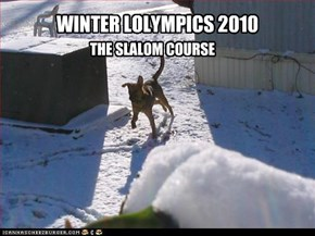 WINTER LOLYMPICS 2010