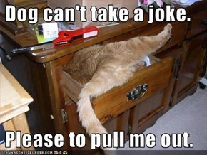Dog can't take a joke.   Please to pull me out.