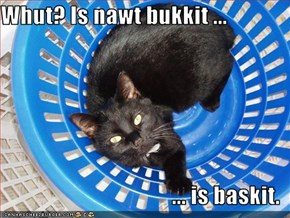 Whut? Is nawt bukkit ...  ... is baskit.