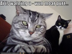 Ai is warning u - wun moar purr...