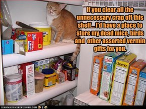If you clear all the unnecessary crap off this shelf... I'd have a place to store my dead mice, birds  and  other assorted vermin gifts for you.