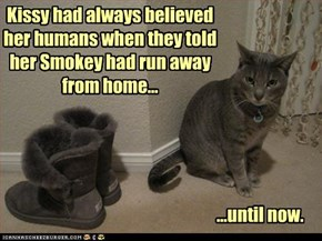 Kissy had always believed her humans when they told her Smokey had run away from home...