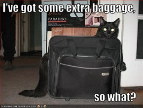 I've got some extra baggage,                                      so what?