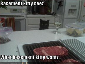 Basement kitty seez..  What basement kitty wantz..