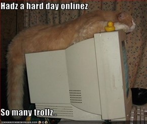 Hadz a hard day onlinez  So many trollz..