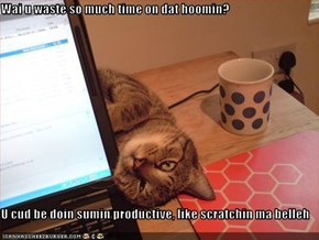 Wai u waste so much time on dat hoomin?  U cud be doin sumin productive, like scratchin ma belleh