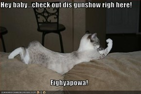 Hey baby...check out dis gunshow righ here!  Fighyapowa!
