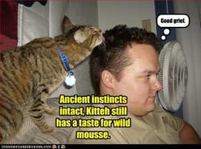 Ancient instincts intact, Kitteh still has a taste for wild mousse.