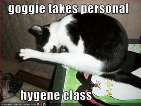 goggie takes personal          hygene class