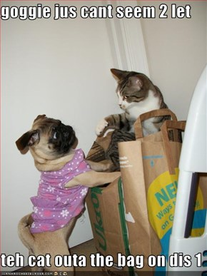 goggie jus cant seem 2 let  teh cat outa the bag on dis 1