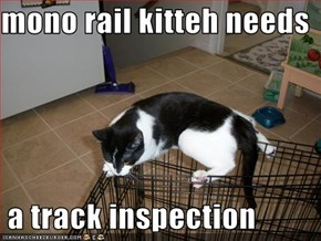 mono rail kitteh needs    a track inspection