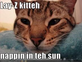 Lay-Z kitteh  nappin in teh sun