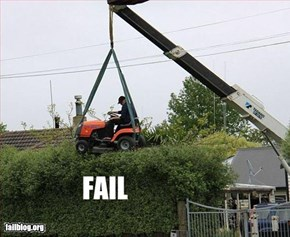 Hedge Trimming Fail