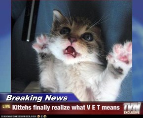 Breaking News - Kittehs finally realize what V E T means