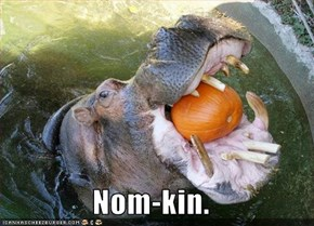 Nom-kin.