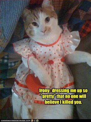 "Irony:  dressing me up so ""pretty"" that no one will believe I killed you."