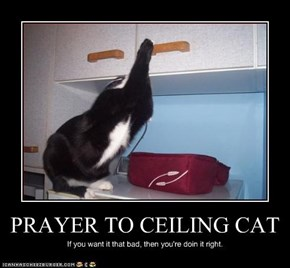 PRAYER TO CEILING CAT
