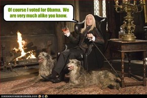 Of course I voted for Obama.  We are very much alike you know.