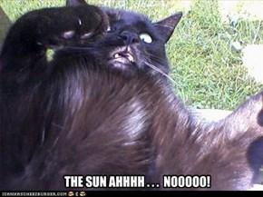 THE SUN AHHHH . . .  NOOOOO!