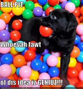 BALL PIT Whoevah tawt of dis idea iz GENIUZ!!!
