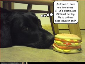 As I see it, dere are two issues:   1)  It's plastic, and  2) Is not hotdog.   Plz to address dese issues in ordr.