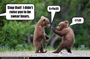 Stop that!  I didn't raise you to be swear bears.