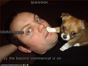 SHHHHH. . . . MMMMMMM srzy the baconz commerical iz on