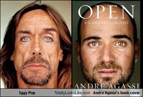 Iggy Pop Totally Looks Like Andre Agassi's book cover